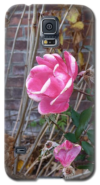 November Rose Galaxy S5 Case by Margie Avellino