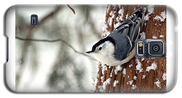Galaxy S5 Case featuring the photograph Nuthatch In Snow Storm by Paula Guttilla