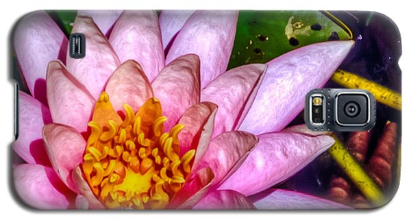 Galaxy S5 Case featuring the photograph Nymphaeaceae by Rob Sellers