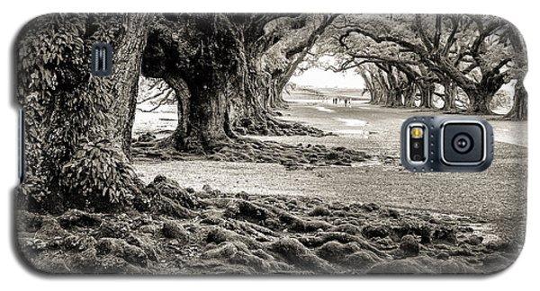 Oak Alley Galaxy S5 Case