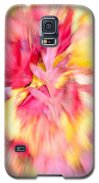 Oak Leaf With Autumn Foliage Galaxy S5 Case
