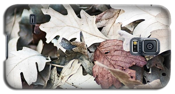 Oak Leaves In Fall Galaxy S5 Case