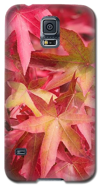 Galaxy S5 Case featuring the photograph Oak Leaves In The Fall by E Faithe Lester