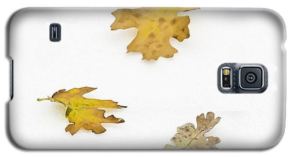Oak Leaves Galaxy S5 Case