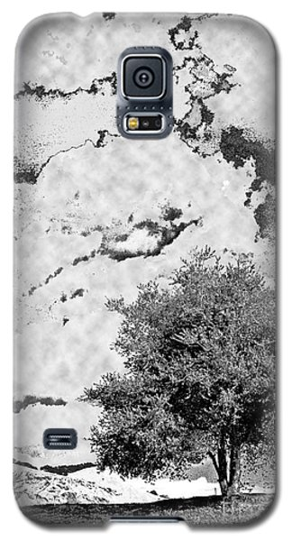 Oak On A Hill Blk And Wht Galaxy S5 Case by Gary Brandes