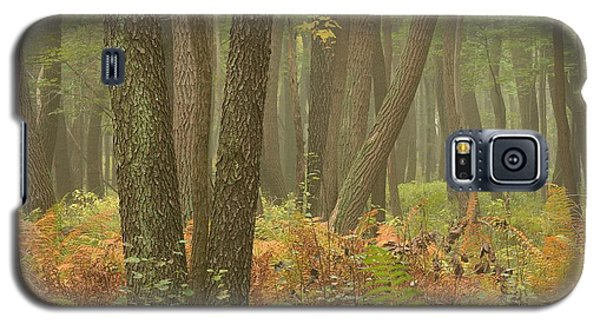 Oak Openings Fog Forest Galaxy S5 Case