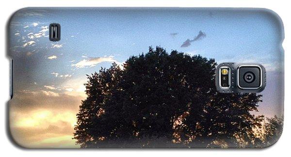 Oak Tree At The Magic Hour Galaxy S5 Case