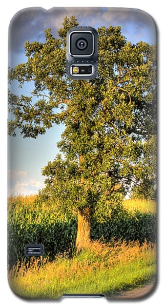 Oak Tree By The Roadside Galaxy S5 Case