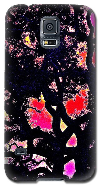 Galaxy S5 Case featuring the photograph Oaks 10 by Pamela Cooper