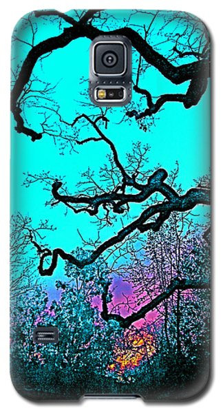 Galaxy S5 Case featuring the photograph Oaks 4 by Pamela Cooper