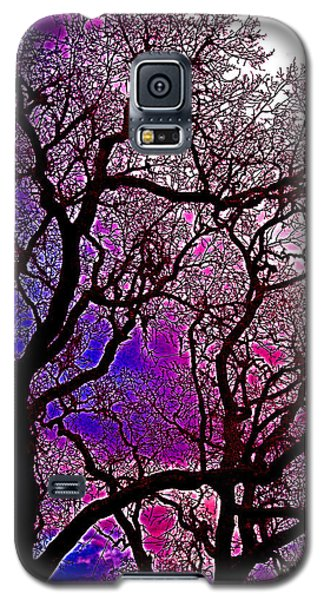 Galaxy S5 Case featuring the photograph Oaks 6 by Pamela Cooper