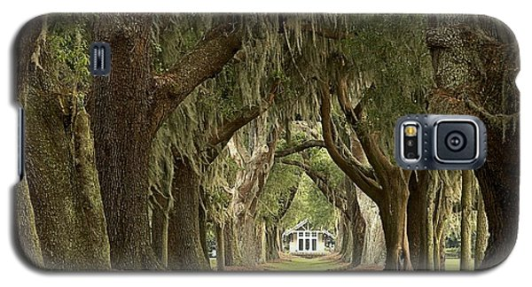 Oaks Of The Golden Isles Galaxy S5 Case