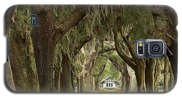 Oaks Of The Golden Isles Galaxy S5 Case
