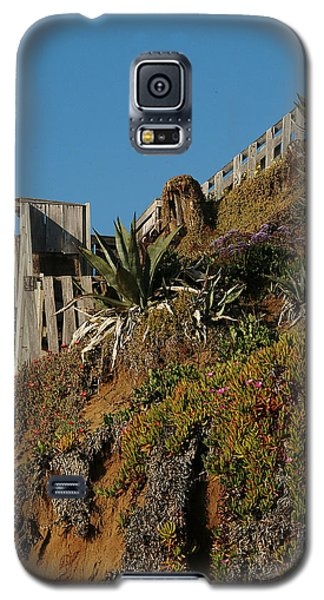 Ocean Beach Hillside Galaxy S5 Case