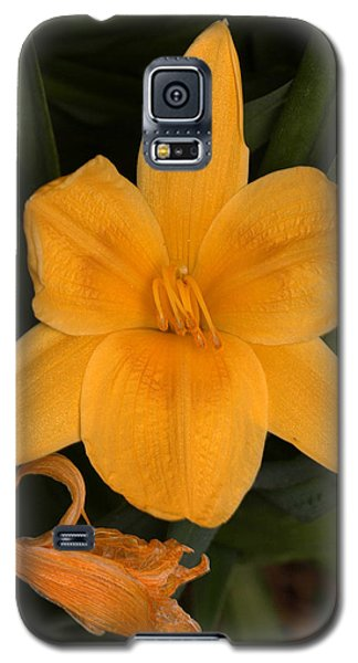 Ocean Beach Yellow Flower Galaxy S5 Case