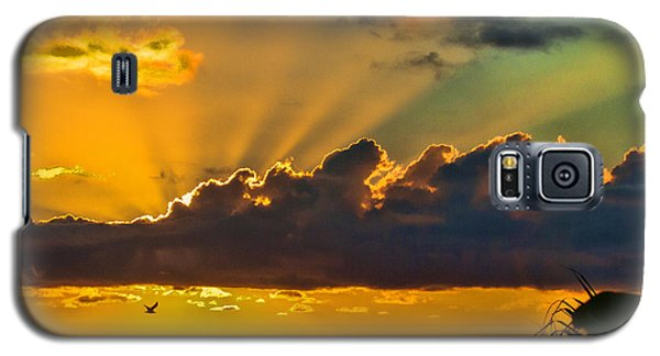 Oceanfront Sunrise Galaxy S5 Case