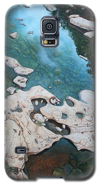 Galaxy S5 Case featuring the painting Ocoee River Low Tide by Mike Ivey