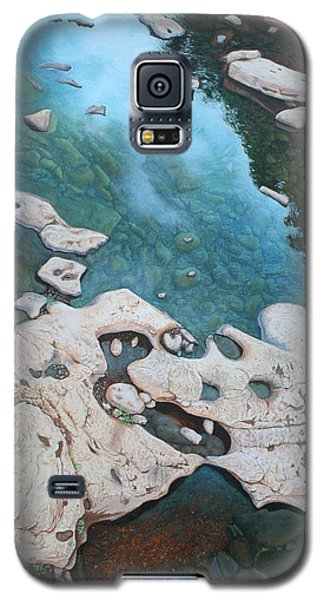 Ocoee River Low Tide Galaxy S5 Case by Mike Ivey