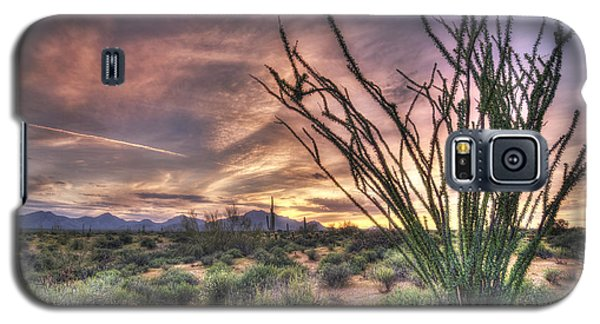 Ocotillo Sunset Galaxy S5 Case