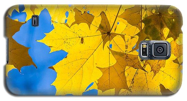 October Blues 8 - Square Galaxy S5 Case by Alexander Senin