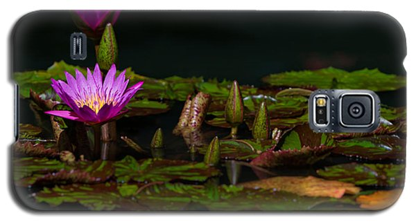 October Lilies 2 Galaxy S5 Case