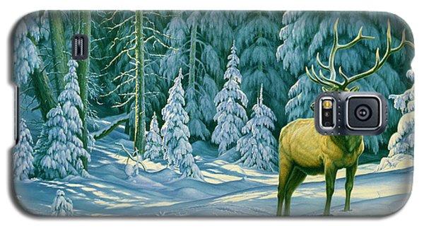 Bull Galaxy S5 Case - October Snow by Paul Krapf