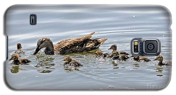 Octomom Duck With Her Ducklings Galaxy S5 Case