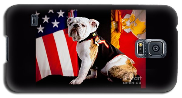 Official Mascot Of The Marine Corps Galaxy S5 Case by Pg Reproductions