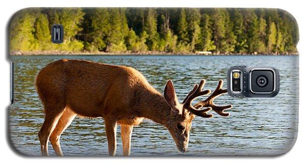 Oh Deer Is That Me Galaxy S5 Case