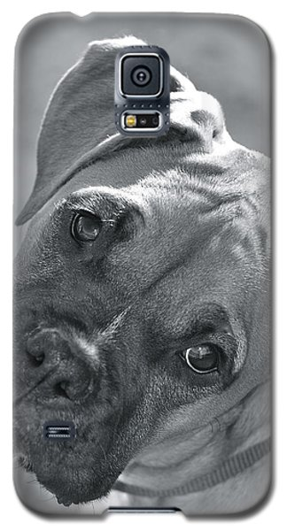 Oh Puppy Galaxy S5 Case