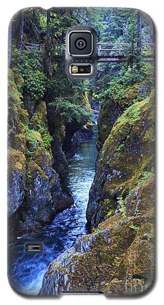 Ohanapecosh River Galaxy S5 Case