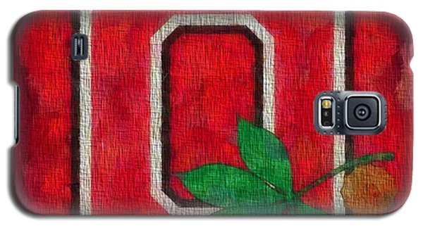 Florida State Galaxy S5 Case - Ohio State Buckeyes On Canvas by Dan Sproul
