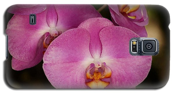 Oil Painted Orchids Galaxy S5 Case by Lorenzo Cassina