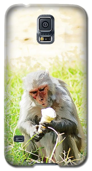 Oil Painting - A Monkey Eating An Ice Cream Galaxy S5 Case by Ashish Agarwal
