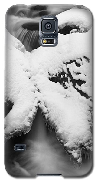 Oirase Gorge Stream In Winter Galaxy S5 Case