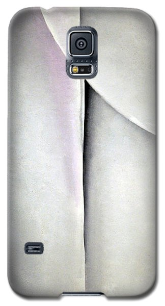 O'keeffe's Line And Curve Galaxy S5 Case