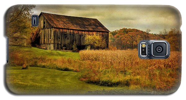 Old Barn In October Galaxy S5 Case by Lois Bryan
