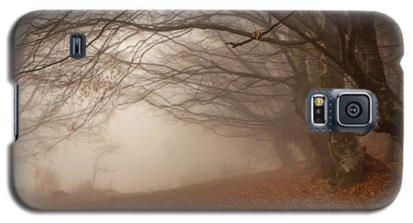 Old Beech Trees In Fog Galaxy S5 Case by Jivko Nakev