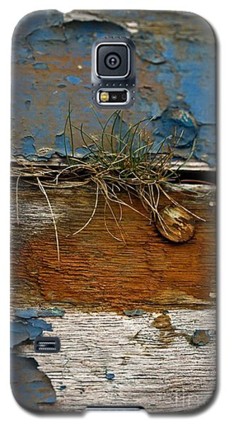 Galaxy S5 Case featuring the photograph Old Boat - Peeling Paint by Liz  Alderdice