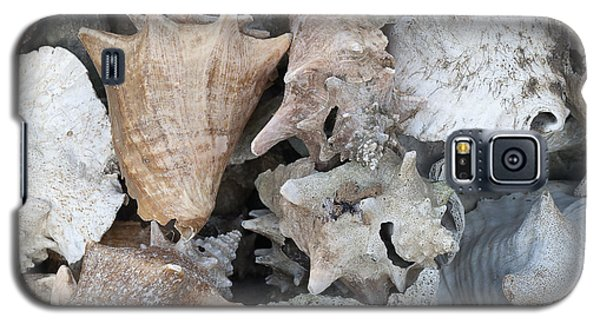 Old Conch Shells Galaxy S5 Case