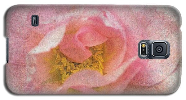 Galaxy S5 Case featuring the photograph Old English Rose by Liz  Alderdice