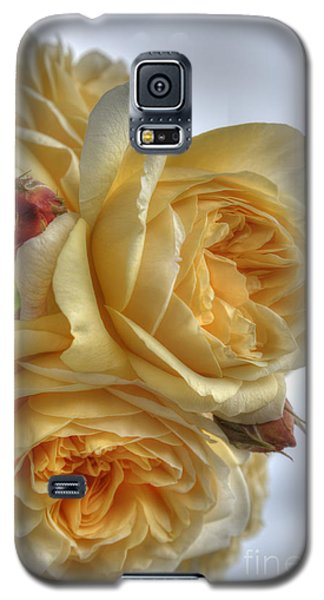 Old Fashion Roses Galaxy S5 Case
