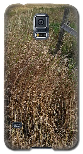 Old Fence Line Galaxy S5 Case