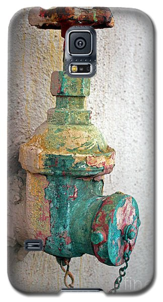 Old Fire Hydrant Galaxy S5 Case