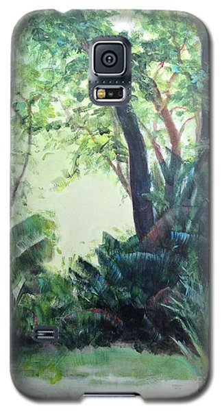 Old Florida 5 Galaxy S5 Case by Mary Lynne Powers