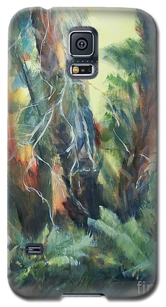 Old Florida Galaxy S5 Case by Mary Lynne Powers