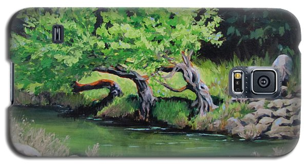 Galaxy S5 Case featuring the painting Old Friends by Karen Ilari