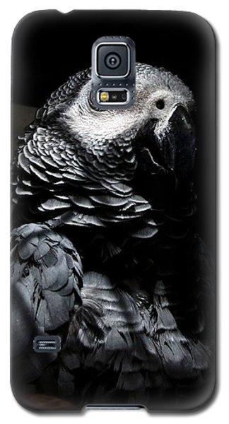 Old Gray Galaxy S5 Case by Steve Godleski