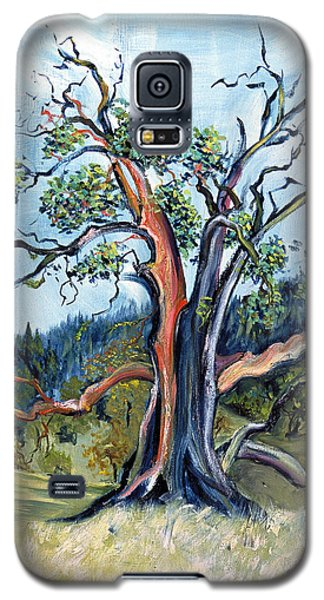 Galaxy S5 Case featuring the painting Old Madrone Tree In November  by Asha Carolyn Young