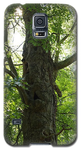 Galaxy S5 Case featuring the photograph Old Man Of The Forest by Deborah Fay